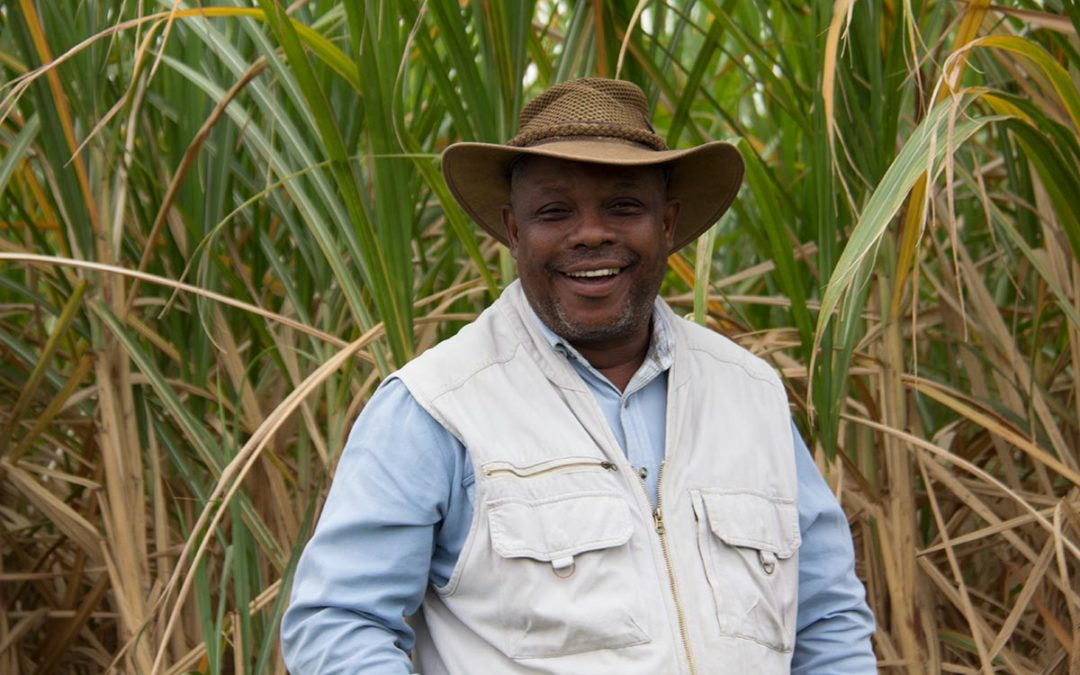 "Sticking to the basics yeilds ""Tip Top"" Crops for Zululand grower Moses Gumede"