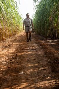 Pongola farmer Dirk Novais