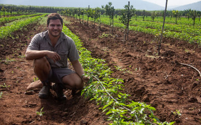Irrigation farmer uses crop diversity to manage growth